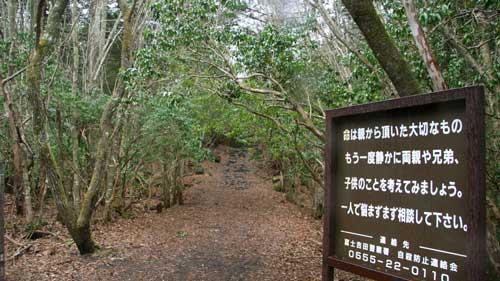 جنگل هاگارا در ژاپن