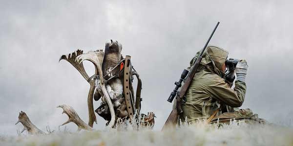 همانند یک شکارچی حرفه ای در کمین یک سهم باشید